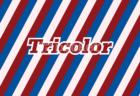 トリコロール ストライプアニメーション無料動画素材